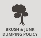 Brush Dumping Policy